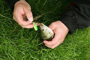 Kalastuskilpailu on loppumassa